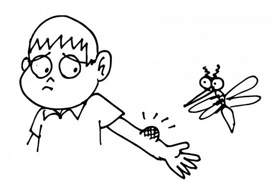Consejos contra las picaduras de mosquitos